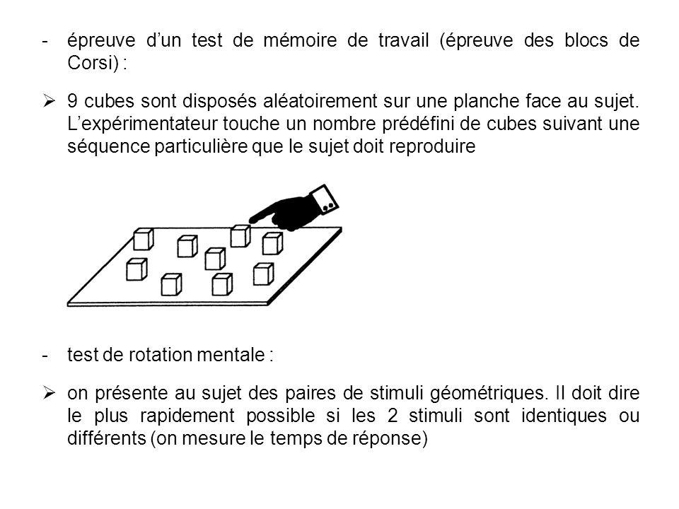 épreuve dun test de mémoire de travail (épreuve des blocs de Corsi) : 9 cubes sont disposés aléatoirement sur une planche face au sujet. Lexpérimenta