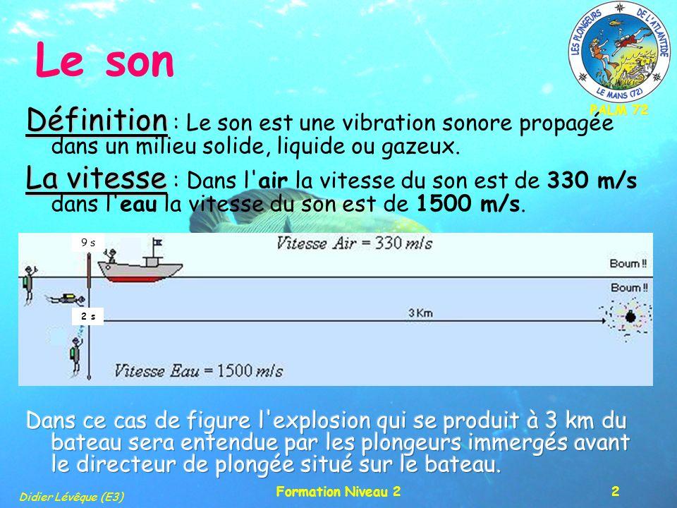 PALM 72 Didier Lévêque (E3) Formation Niveau 23 Le son