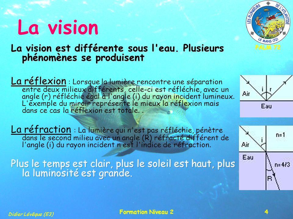 PALM 72 Didier Lévêque (E3) Formation Niveau 24 La vision