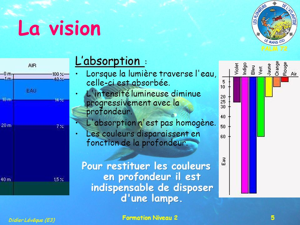 PALM 72 Didier Lévêque (E3) Formation Niveau 26 La vision La diffusion La diffusion : Les particules en suspension que l on peut trouver dans l eau peuvent réfléchir la lumière et la dévier.