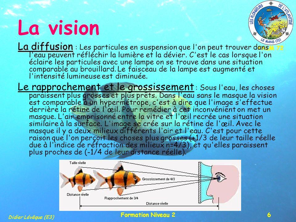 PALM 72 Didier Lévêque (E3) Formation Niveau 26 La vision La diffusion La diffusion : Les particules en suspension que l'on peut trouver dans l'eau pe