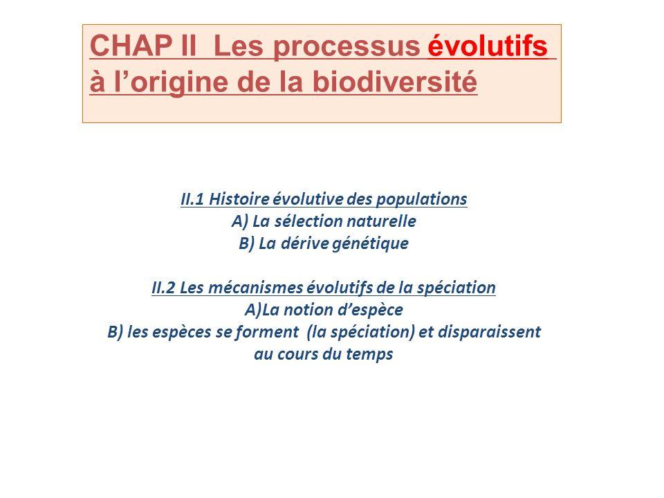 II.1 Histoire évolutive des populations A) La sélection naturelle B) La dérive génétique II.2 Les mécanismes évolutifs de la spéciation A)La notion de