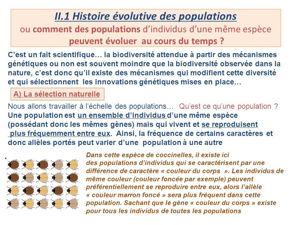 II.1 Histoire évolutive des populations ou comment des populations dindividus dune même espèce peuvent évoluer au cours du temps ? Cest un fait scient