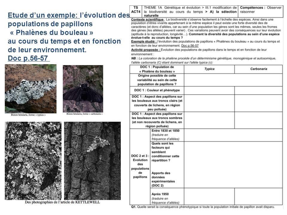 Etude dun exemple: lévolution des populations de papillons « Phalènes du bouleau » au cours du temps et en fonction de leur environnement. Doc p.56-57
