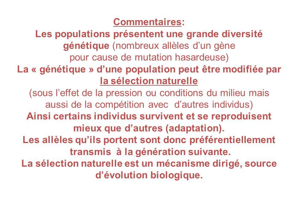 Commentaires: Les populations présentent une grande diversité génétique (nombreux allèles dun gène pour cause de mutation hasardeuse) La « génétique »