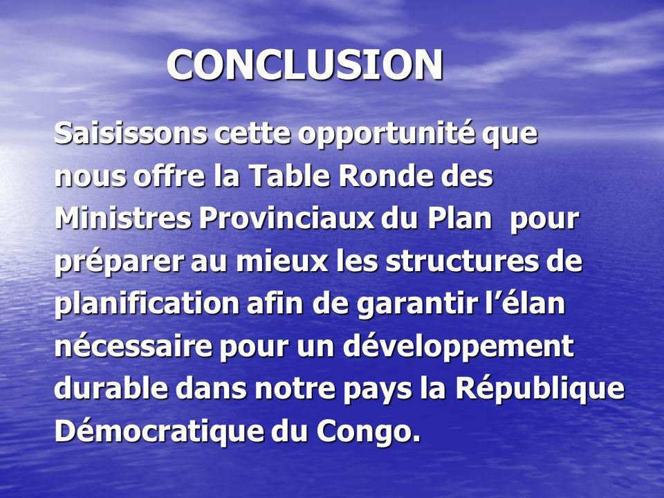 CONCLUSION CONCLUSION Saisissons cette opportunité que nous offre la Table Ronde des Ministres Provinciaux du Plan pour préparer au mieux les structur