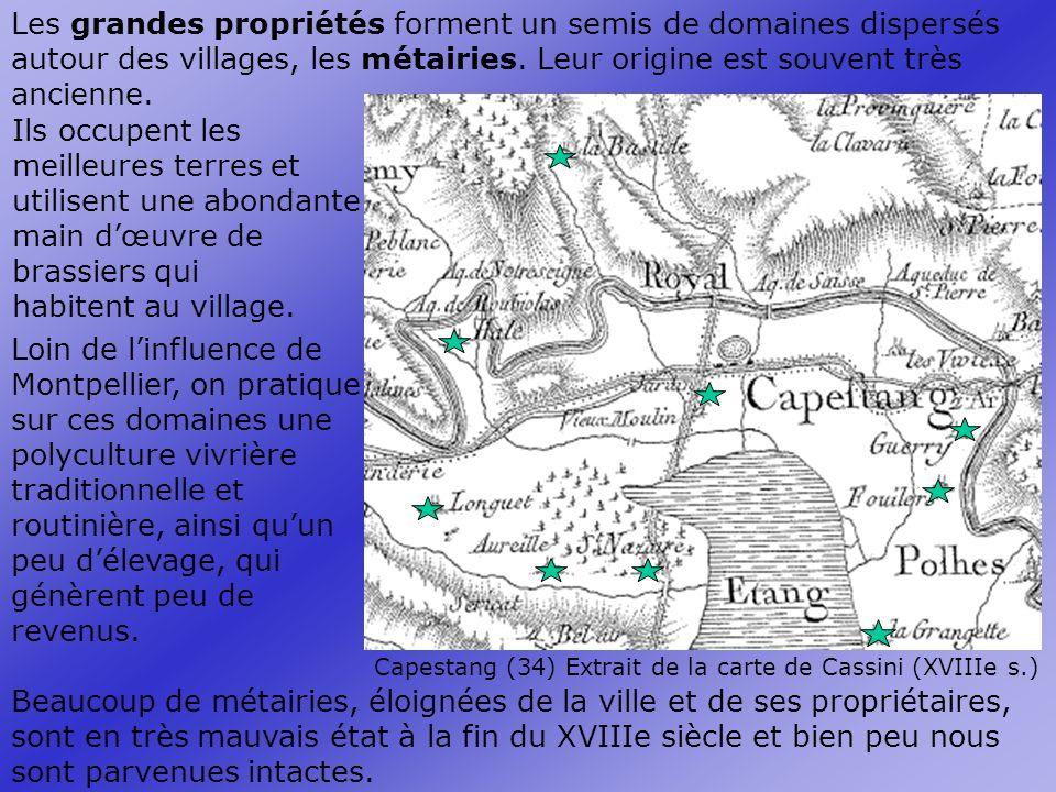 Les grandes propriétés forment un semis de domaines dispersés autour des villages, les métairies.