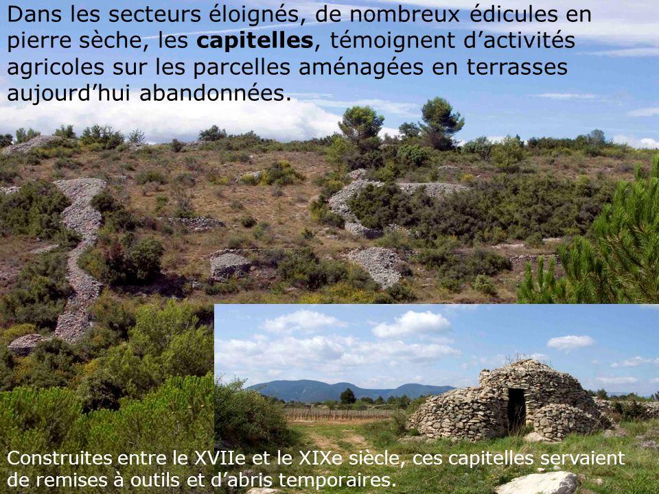 Dans les secteurs éloignés, de nombreux édicules en pierre sèche, les capitelles, témoignent dactivités agricoles sur les parcelles aménagées en terrasses aujourdhui abandonnées.