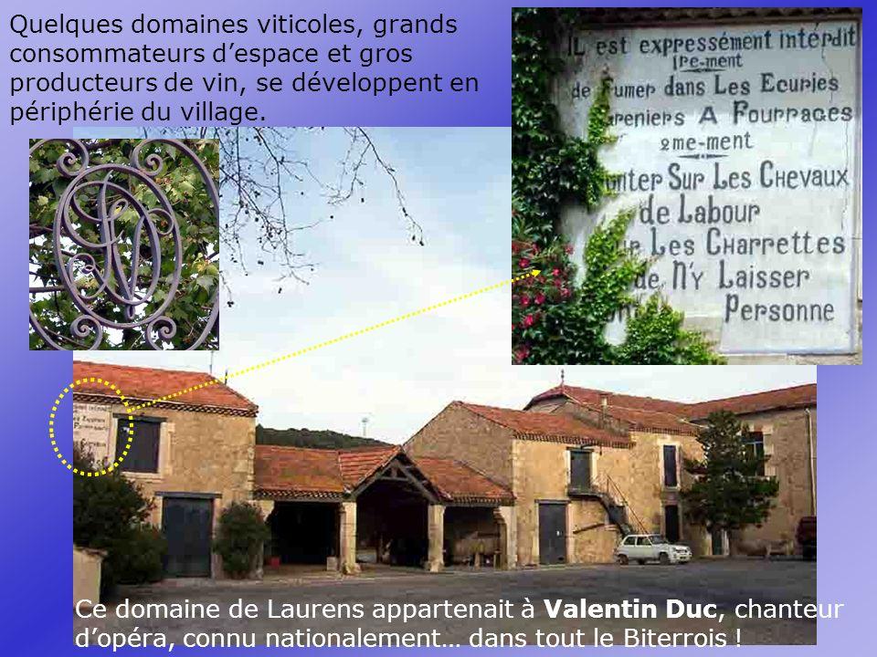 Quelques domaines viticoles, grands consommateurs despace et gros producteurs de vin, se développent en périphérie du village.