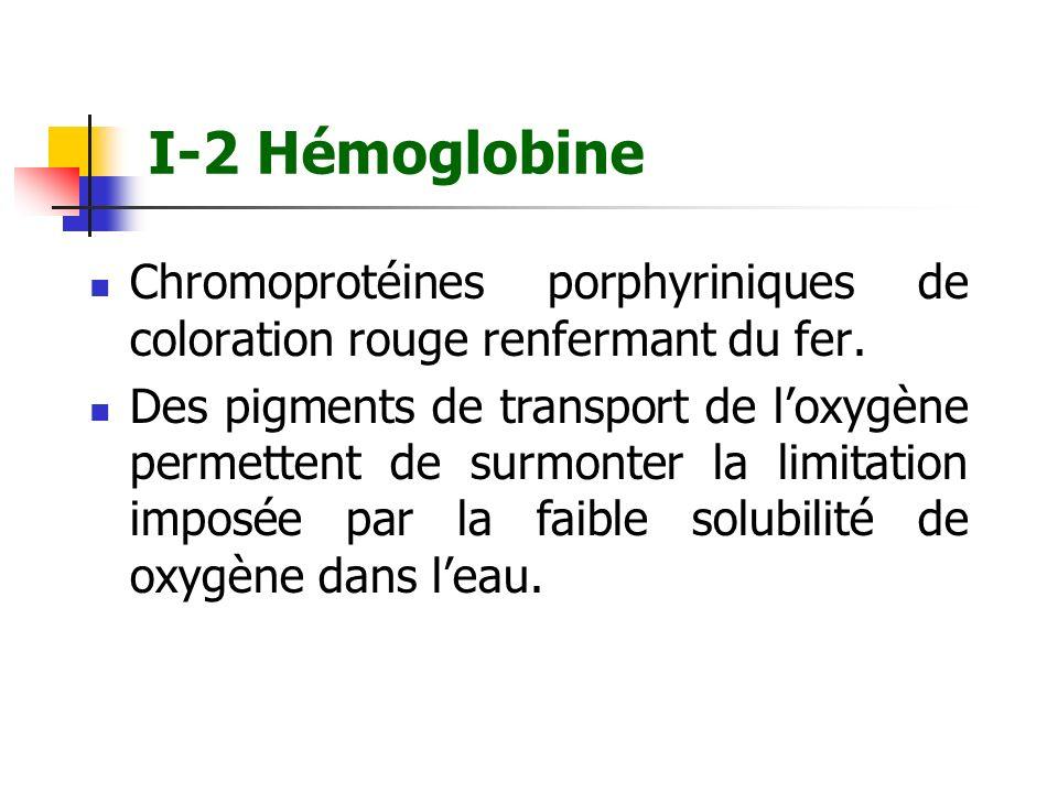 I-2 Hémoglobine Chromoprotéines porphyriniques de coloration rouge renfermant du fer. Des pigments de transport de loxygène permettent de surmonter la