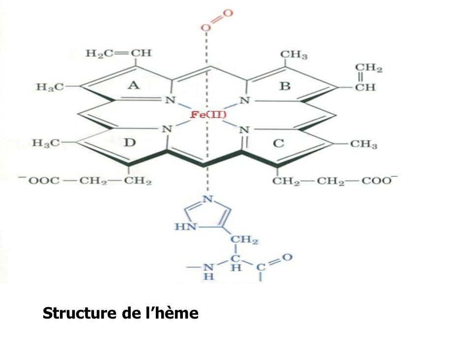 Structure de lhème