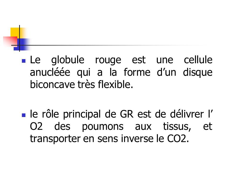 Le globule rouge est une cellule anucléée qui a la forme dun disque biconcave très flexible. le rôle principal de GR est de délivrer l O2 des poumons