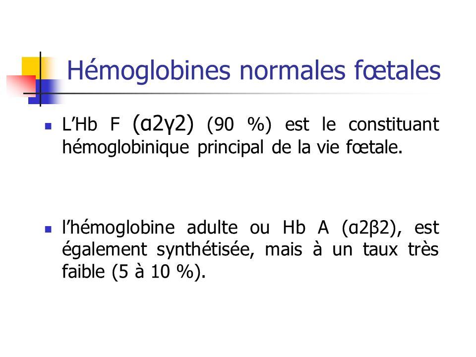 Hémoglobines normales fœtales LHb F (α2γ2) (90 %) est le constituant hémoglobinique principal de la vie fœtale. lhémoglobine adulte ou Hb A (α2β2), es