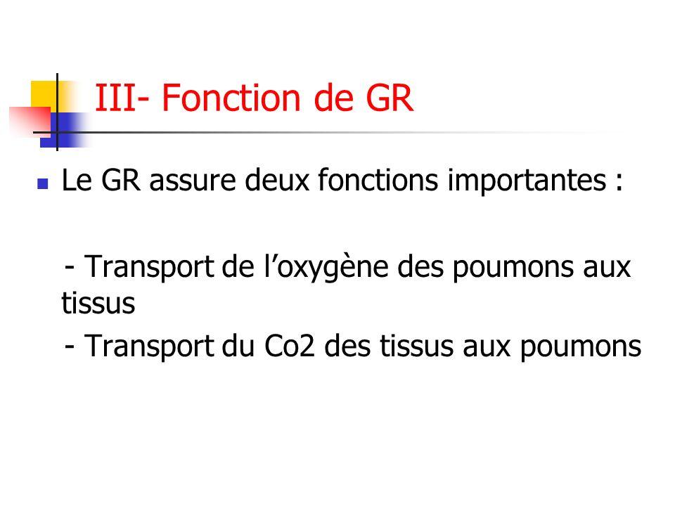 III- Fonction de GR Le GR assure deux fonctions importantes : - Transport de loxygène des poumons aux tissus - Transport du Co2 des tissus aux poumons