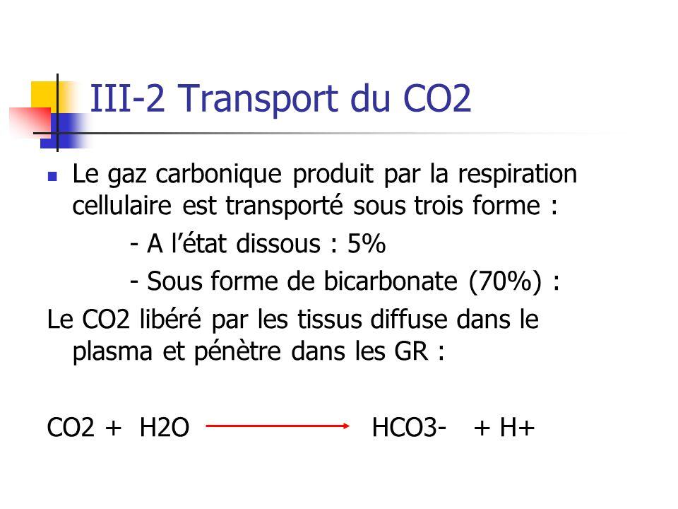 III-2 Transport du CO2 Le gaz carbonique produit par la respiration cellulaire est transporté sous trois forme : - A létat dissous : 5% - Sous forme d