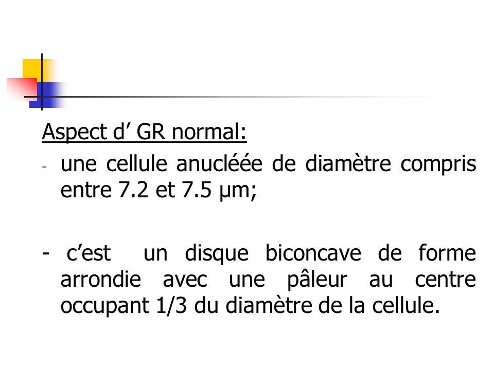 Aspect d GR normal: - une cellule anucléée de diamètre compris entre 7.2 et 7.5 µm; - cest un disque biconcave de forme arrondie avec une pâleur au ce