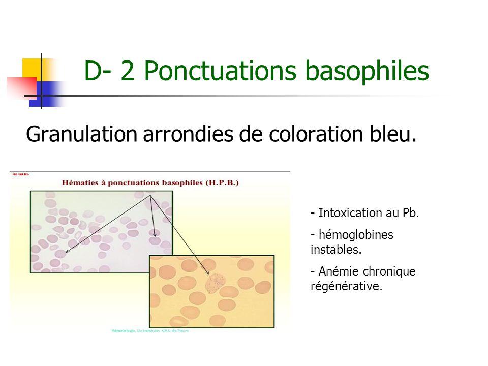 D- 2 Ponctuations basophiles Granulation arrondies de coloration bleu. - Intoxication au Pb. - hémoglobines instables. - Anémie chronique régénérative
