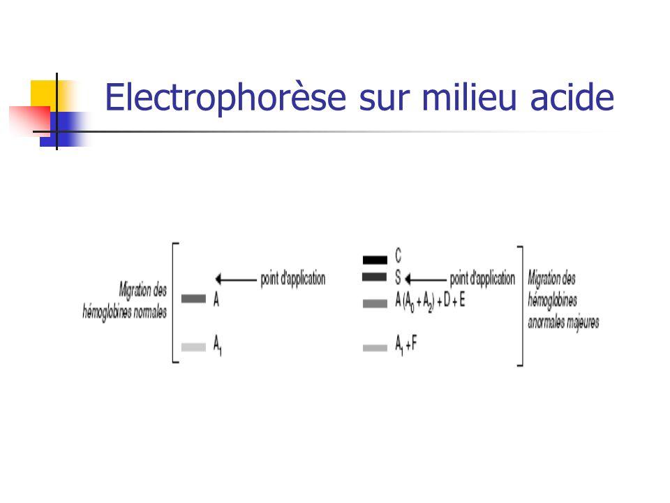 Electrophorèse sur milieu acide