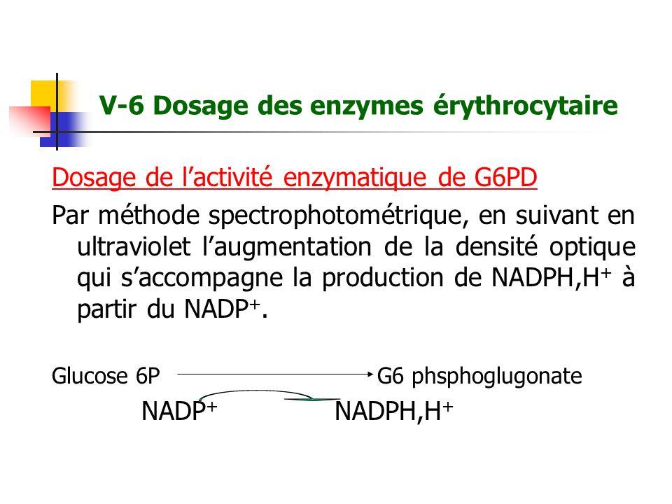 V-6 Dosage des enzymes érythrocytaire Dosage de lactivité enzymatique de G6PD Par méthode spectrophotométrique, en suivant en ultraviolet laugmentatio