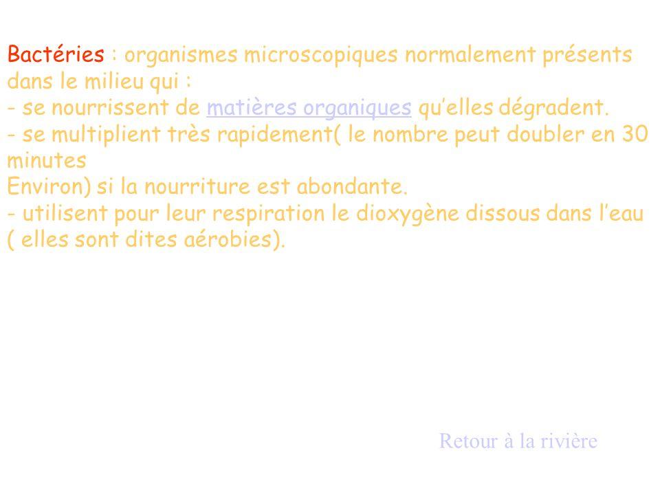 Bactéries : organismes microscopiques normalement présents dans le milieu qui : - se nourrissent de matières organiques quelles dégradent.matières org