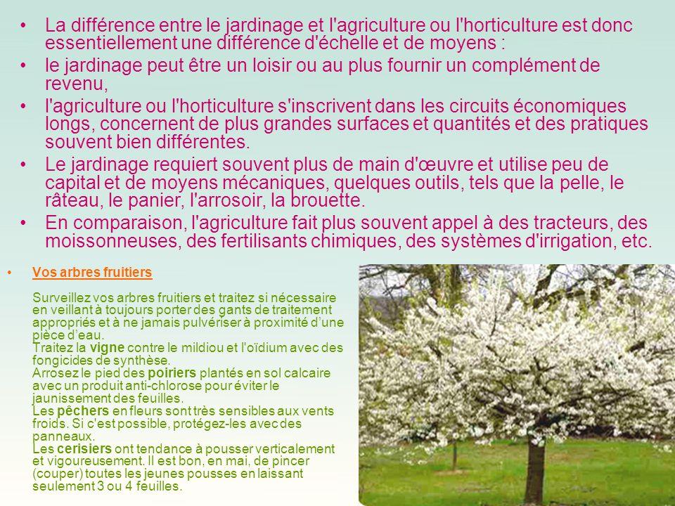 Sitographie: http://www.mr-bricolage.fr/ http://www.jardinage.net/ http://vide-greniers.org/ http://www.leparisdunet.fr/brocante-paris/brocante-paris.html Merci à tous .