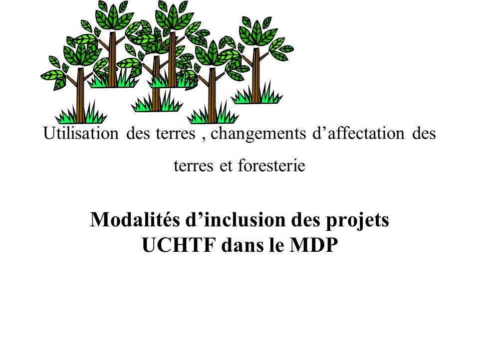 Utilisation des terres, changements daffectation des terres et foresterie Modalités dinclusion des projets UCHTF dans le MDP