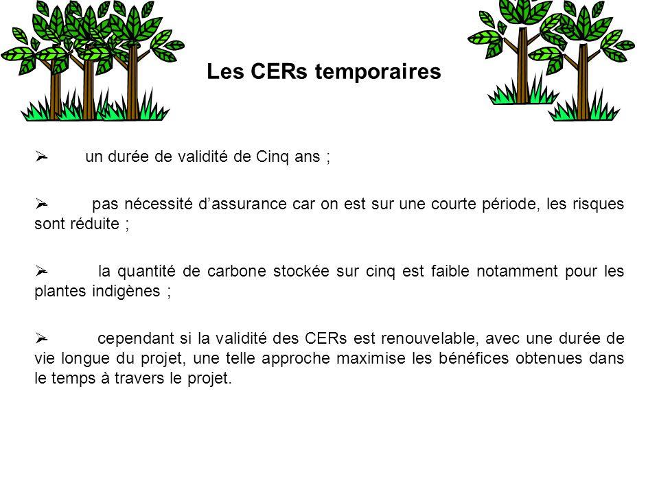 Les CERs temporaires - un durée de validité de Cinq ans ; - pas nécessité dassurance car on est sur une courte période, les risques sont réduite ; - l