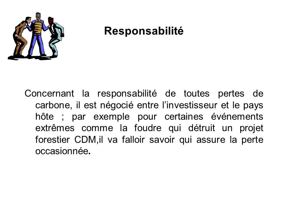 Responsabilité Concernant la responsabilité de toutes pertes de carbone, il est négocié entre linvestisseur et le pays hôte ; par exemple pour certain