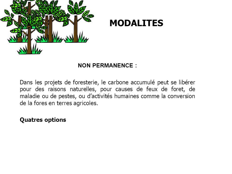 MODALITES NON PERMANENCE : Dans les projets de foresterie, le carbone accumulé peut se libérer pour des raisons naturelles, pour causes de feux de for