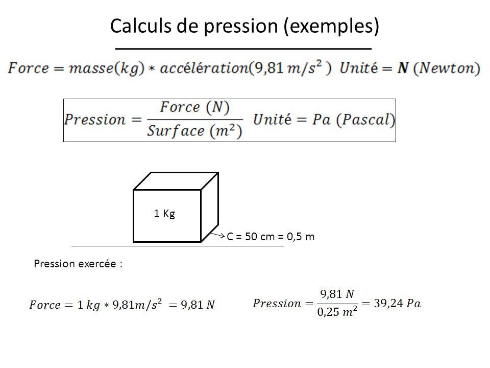 Calculs de pression (exemples) 1 Kg C = 50 cm = 0,5 m Pression exercée :