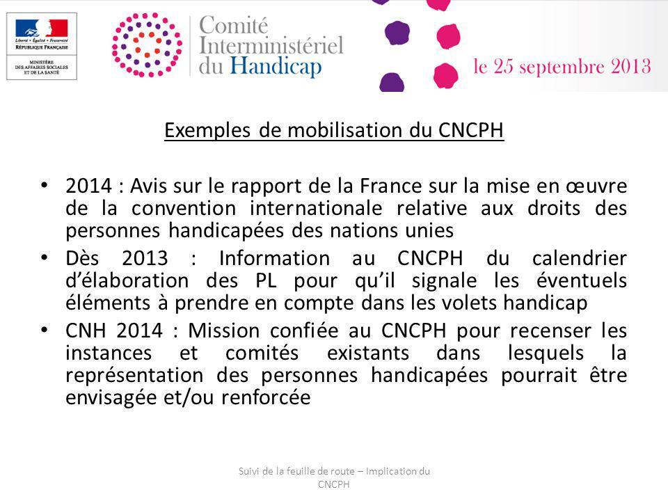 Exemples de mobilisation du CNCPH 2014 : Avis sur le rapport de la France sur la mise en œuvre de la convention internationale relative aux droits des