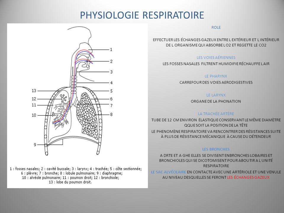 PHYSIOLOGIE RESPIRATOIRE ROLE EFFECTUER LES ÉCHANGES GAZEUX ENTRE L EXTÉRIEUR ET L INTÉRIEUR DE L ORGANISME QUI ABSORBE L O2 ET REGETTE LE CO2 LES VOI