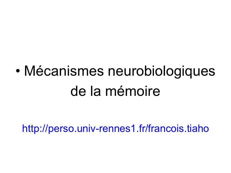 Mécanismes neurobiologiques de la mémoire http://perso.univ-rennes1.fr/francois.tiaho