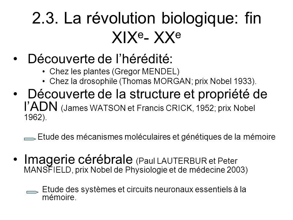 2.3. La révolution biologique: fin XIX e - XX e Découverte de lhérédité: Chez les plantes (Gregor MENDEL) Chez la drosophile (Thomas MORGAN; prix Nobe