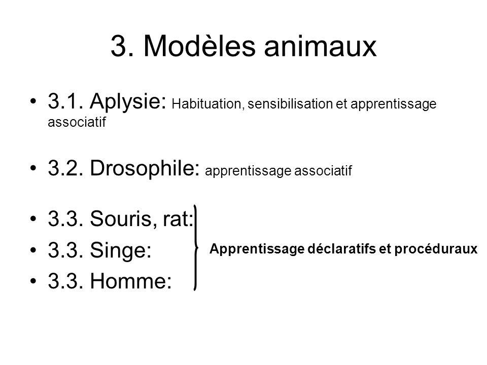 3. Modèles animaux 3.1. Aplysie: Habituation, sensibilisation et apprentissage associatif 3.2. Drosophile: apprentissage associatif 3.3. Souris, rat: