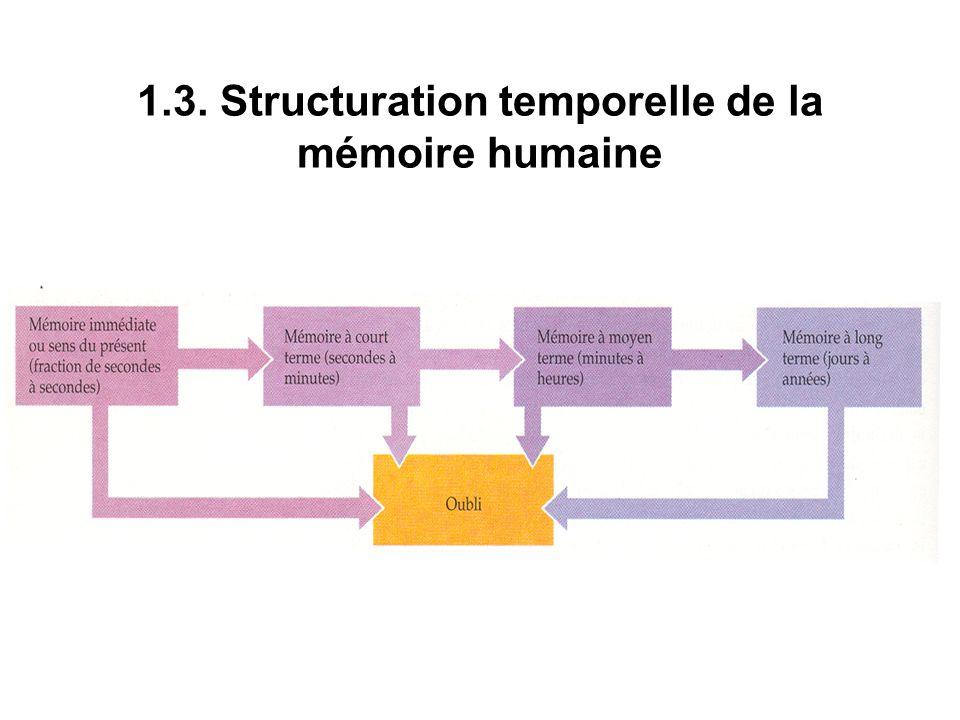 1.3. Structuration temporelle de la mémoire humaine