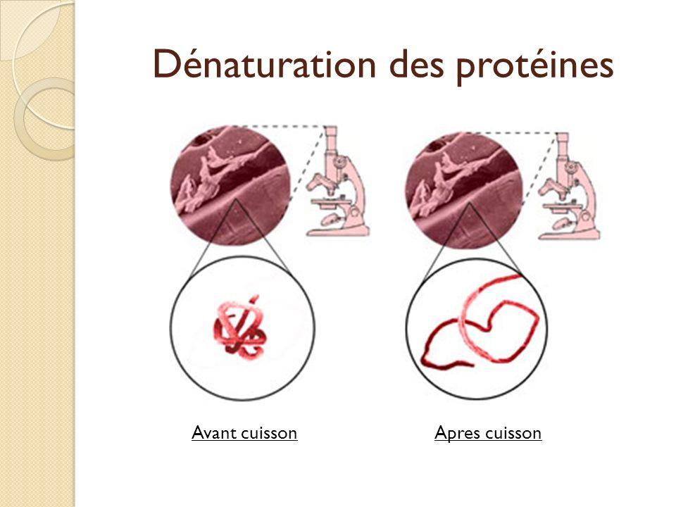Dénaturation des protéines Avant cuissonApres cuisson