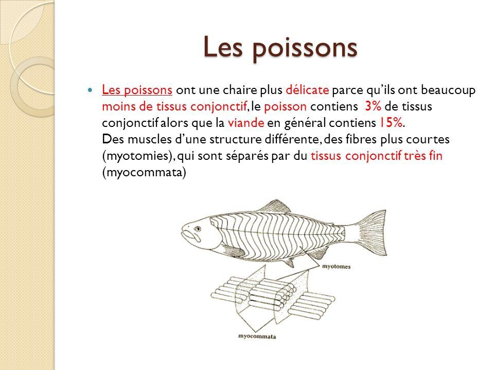 Les poissons Les poissons ont une chaire plus délicate parce quils ont beaucoup moins de tissus conjonctif, le poisson contiens 3% de tissus conjoncti