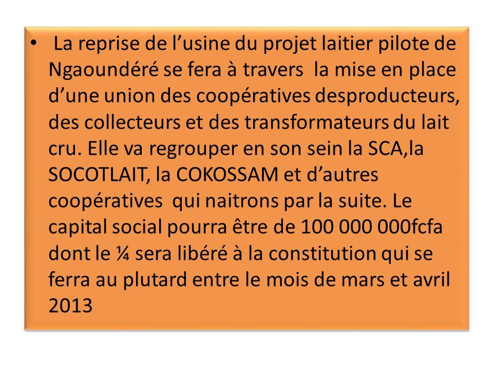 La reprise de lusine du projet laitier pilote de Ngaoundéré se fera à travers la mise en place dune union des coopératives desproducteurs, des collecteurs et des transformateurs du lait cru.