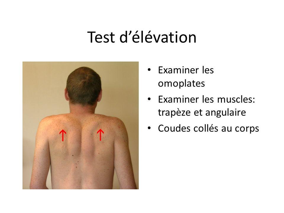 Test délévation Examiner les omoplates Examiner les muscles: trapèze et angulaire Coudes collés au corps