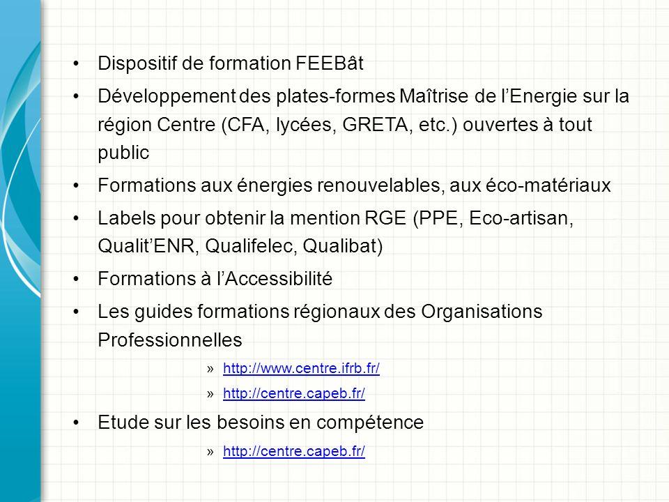 Dispositif de formation FEEBât Développement des plates-formes Maîtrise de lEnergie sur la région Centre (CFA, lycées, GRETA, etc.) ouvertes à tout public Formations aux énergies renouvelables, aux éco-matériaux Labels pour obtenir la mention RGE (PPE, Eco-artisan, QualitENR, Qualifelec, Qualibat) Formations à lAccessibilité Les guides formations régionaux des Organisations Professionnelles »http://www.centre.ifrb.fr/http://www.centre.ifrb.fr/ »http://centre.capeb.fr/http://centre.capeb.fr/ Etude sur les besoins en compétence »http://centre.capeb.fr/http://centre.capeb.fr/