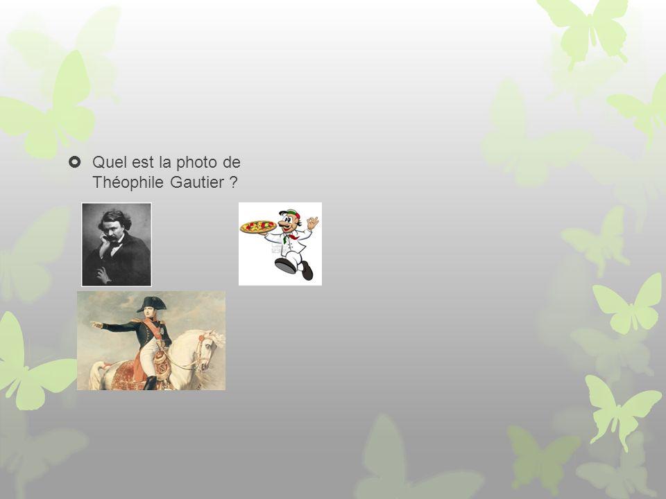 Quel est la photo de Théophile Gautier ?