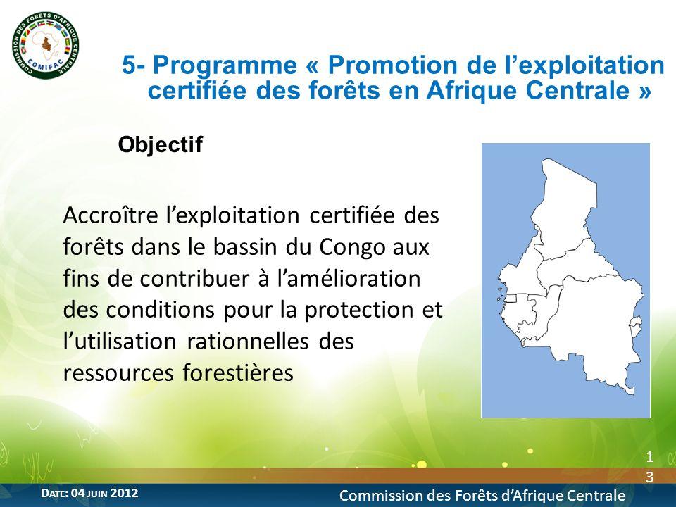 Objectif 13 5- Programme « Promotion de lexploitation certifiée des forêts en Afrique Centrale » Commission des Forêts dAfrique Centrale D ATE : 04 JU
