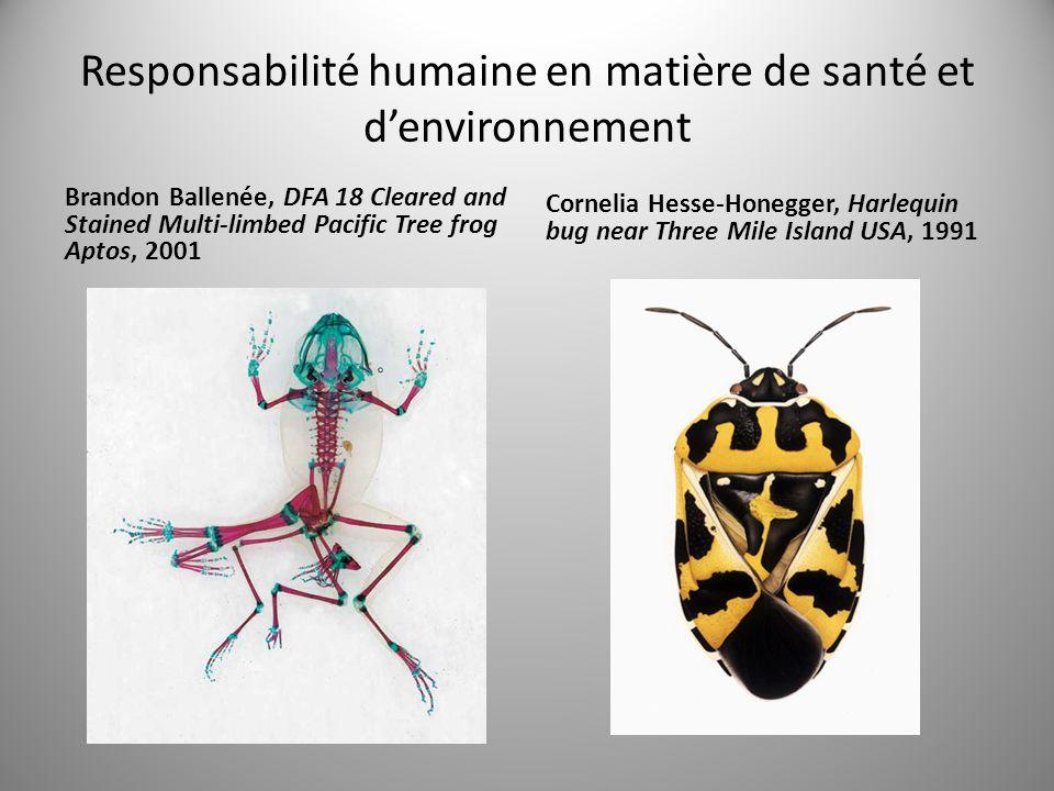 Responsabilité humaine en matière de santé et denvironnement Brandon Ballenée, DFA 18 Cleared and Stained Multi-limbed Pacific Tree frog Aptos, 2001 Cornelia Hesse-Honegger, Harlequin bug near Three Mile Island USA, 1991