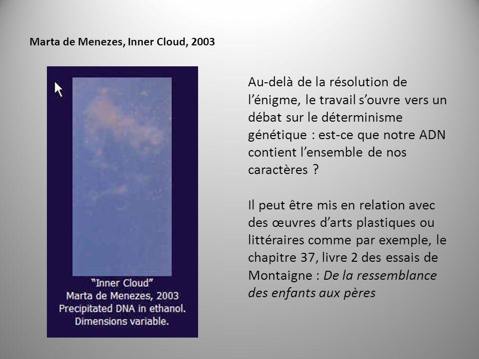 Marta de Menezes, Inner Cloud, 2003 Au-delà de la résolution de lénigme, le travail souvre vers un débat sur le déterminisme génétique : est-ce que notre ADN contient lensemble de nos caractères .