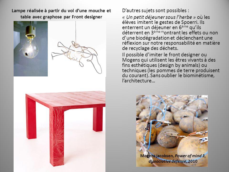Lampe réalisée à partir du vol dune mouche et table avec graphose par Front designer Dautres sujets sont possibles : « Un petit déjeuner sous lherbe » où les élèves imitent le gestes de Spoerri.