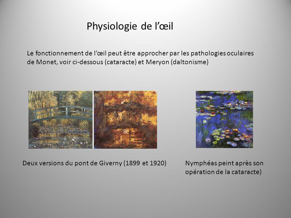 Le fonctionnement de lœil peut être approcher par les pathologies oculaires de Monet, voir ci-dessous (cataracte) et Meryon (daltonisme) Deux versions du pont de Giverny (1899 et 1920)Nymphéas peint après son opération de la cataracte) Physiologie de lœil