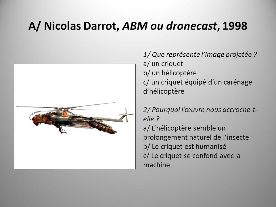 B/ Hubert Duprat, Trichoptère, 2006 1/ Que représente limage projetée .