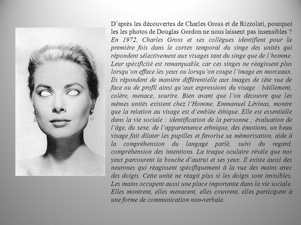 Daprès les découvertes de Charles Gross et de Rizzolati, pourquoi les les photos de Douglas Gordon ne nous laissent pas insensibles .