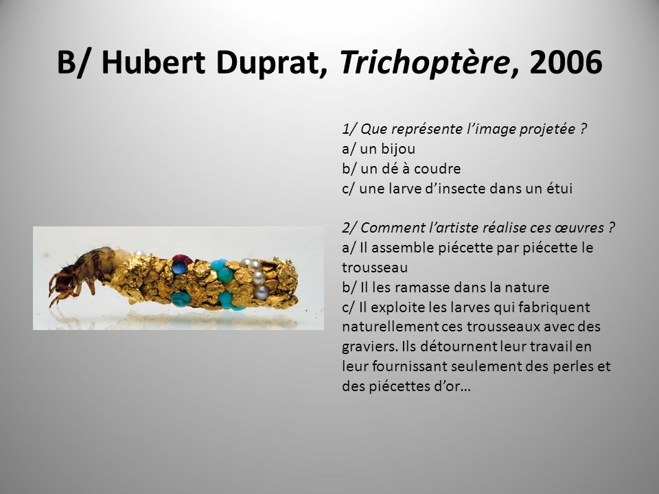 Evolution Koen Vanmechelen, the cosmopolitan chicken projet, 2007 Angelo Vermeulen et Luc de Reester, Blue shift, 2005